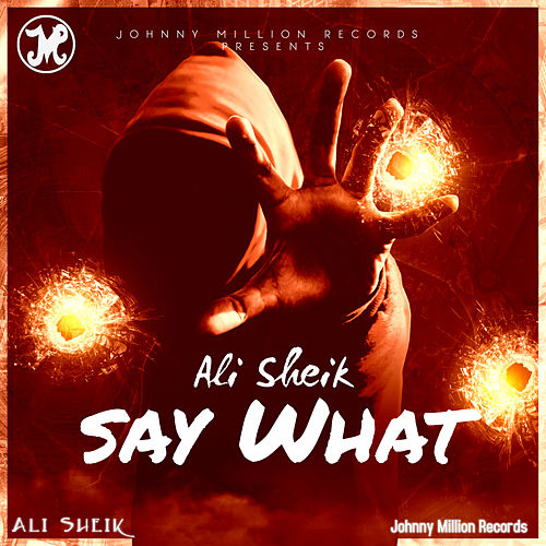 Say What by Ali Sheik