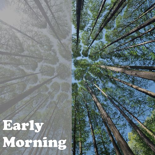 Early Morning by Nature Sounds (1)