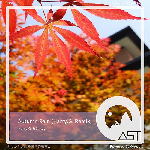 Autumn Rain (Harry.G. Remix) von Harry G