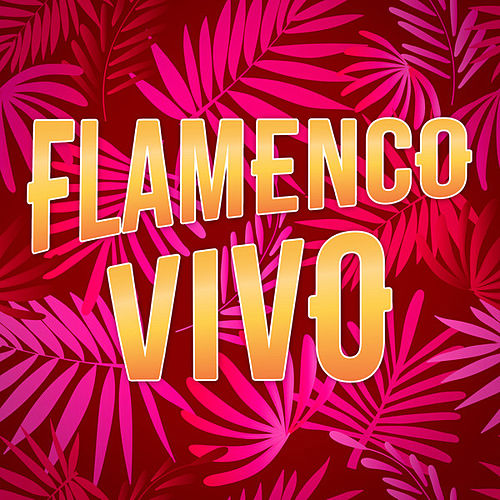 Flamenco Vivo de Various Artists