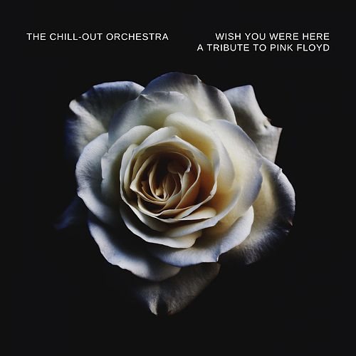 Wish You Were Here (A Tribute To Pink Floyd ) von The Chill-Out Orchestra