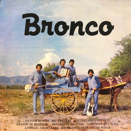 Grande De Caderas de Bronco