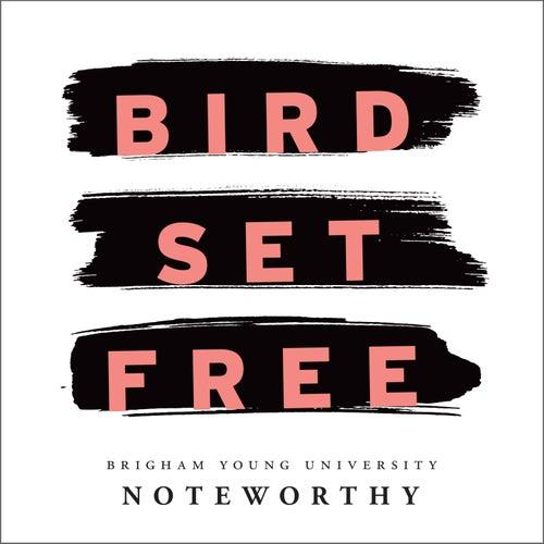 Bird Set Free von BYU Noteworthy