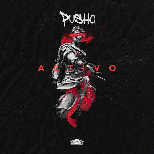 Activo von Pusho