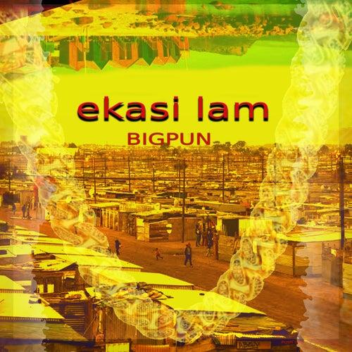 ekasi lam (Radio Edit) by Big Pun
