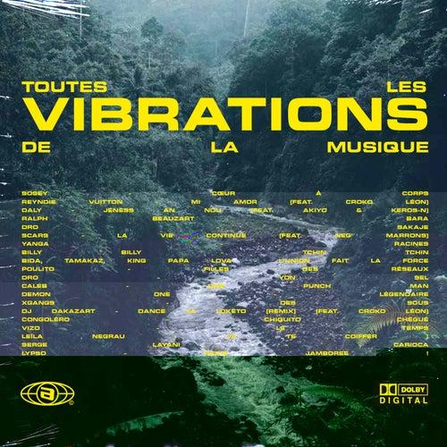Vibes Music : Toutes les vibrations de la musique de Various Artists