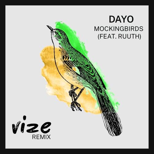 Mockingbirds (VIZE Remix) by Dayo
