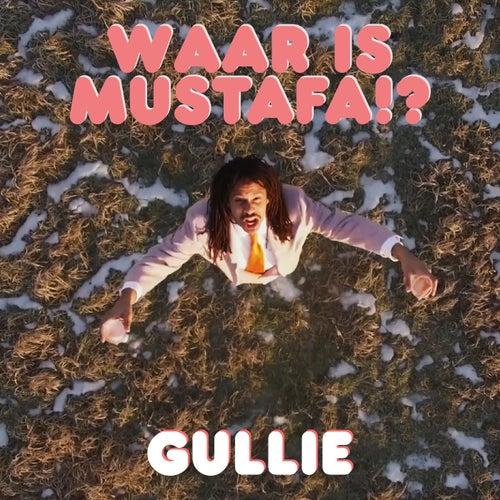 Waar Is Mustafa!? by Gullie