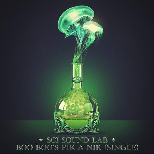 SCI Sound Lab: Boo Boo's Pik-a-Nik - Single de The String Cheese Incident