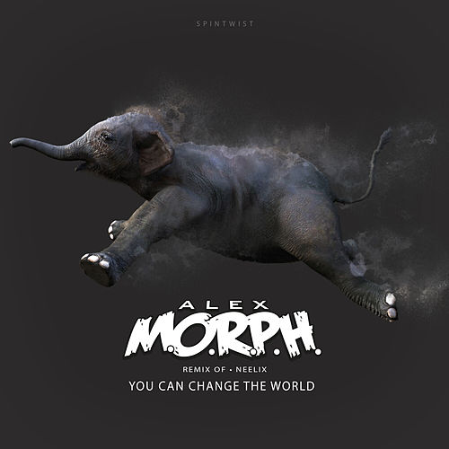 You Can Change The World (Alex M.O.R.P.H. Remix) von Neelix