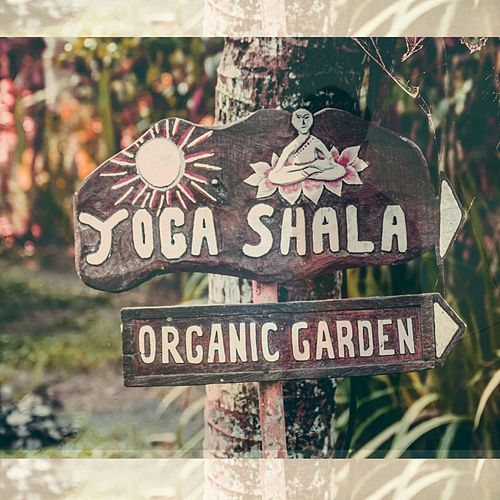 Organic Garden von Yoga Shala
