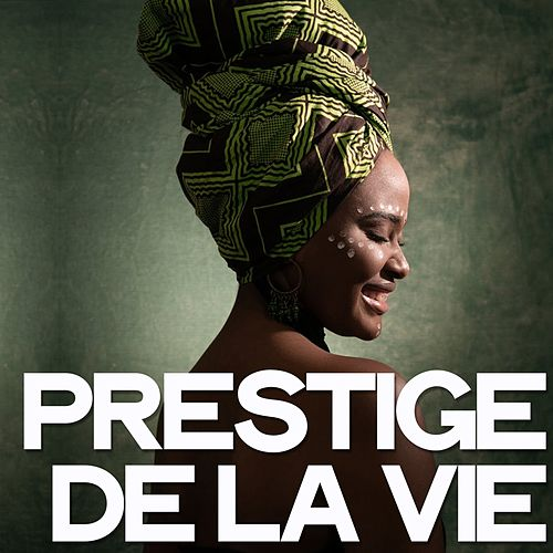 Prestige de la vie de Various Artists