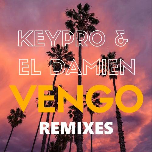 Vengo! (Remixes) von Damien
