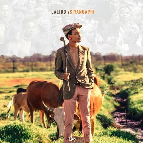Siyangaphi by Laliboi