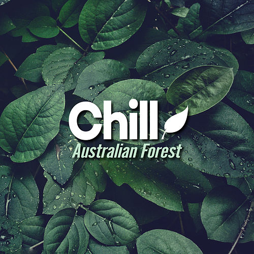 Australian Forest de Chill