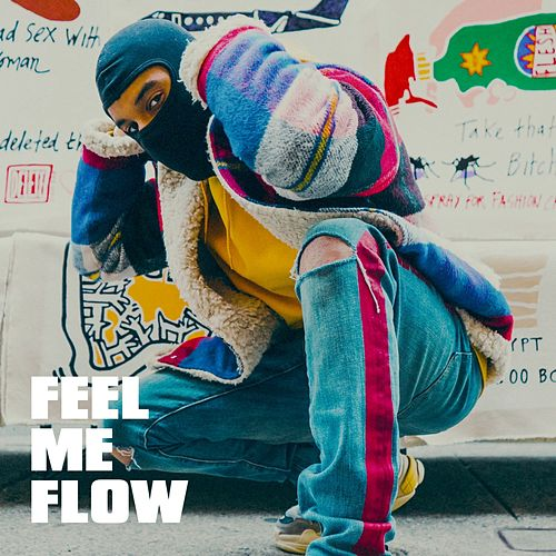 Feel Me Flow by Hip Hop All-Stars, Hip Hop Hitmakers, The Party Hits All Stars