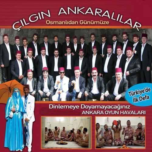 Çılgın Ankaralılar von Çeşitli Sanatçılar