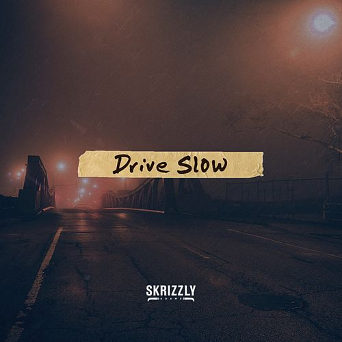 Drive Slow by Skrizzly Adams