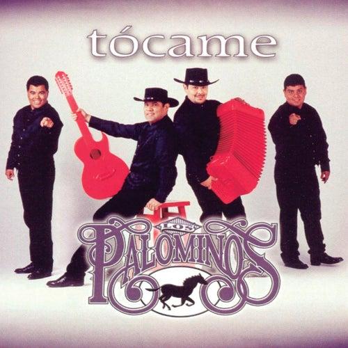 Tócame de Los Palominos
