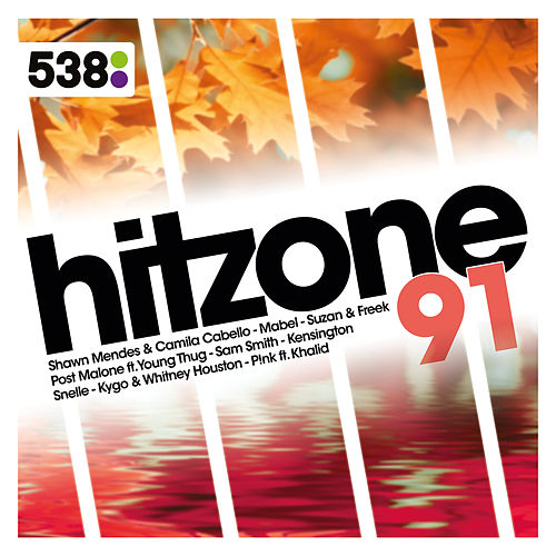 538 Hitzone 91 van Various Artists