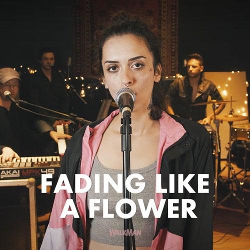 Fading Like a Flower (Cover) von Walkman Hits