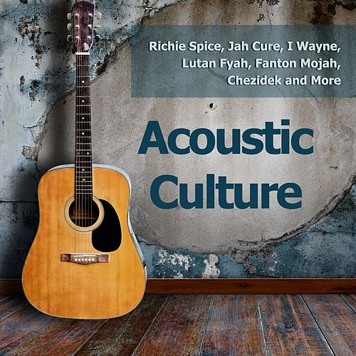 Acoustic Culture de Various Artists