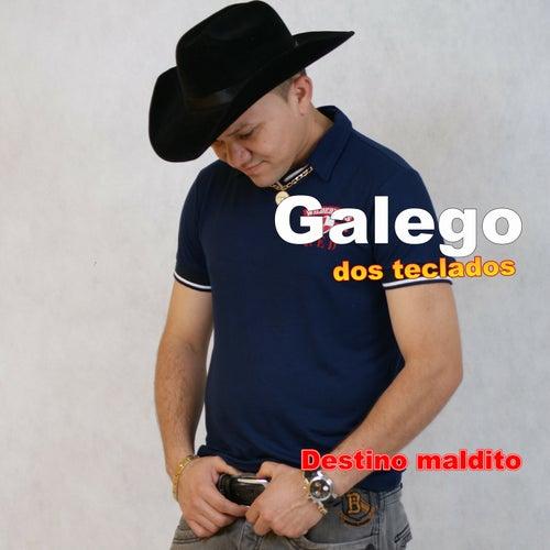 Destino Maldito de Galego dos Teclados