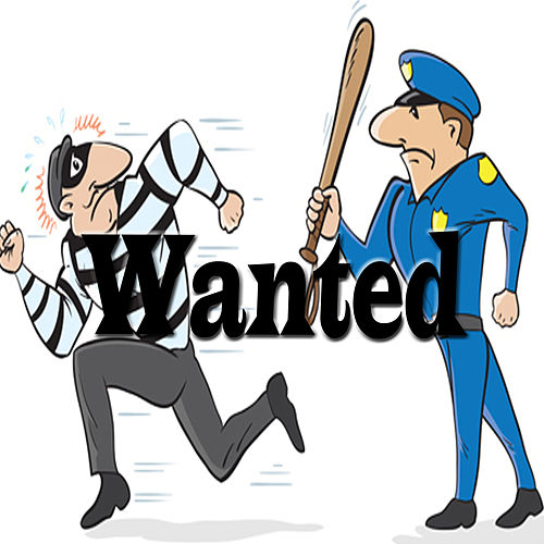 Wanted by Beenie Man
