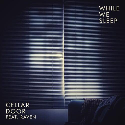 While We Sleep von Cellar Door