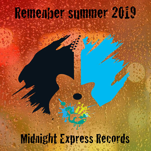 Remember Summer 2019 de Various