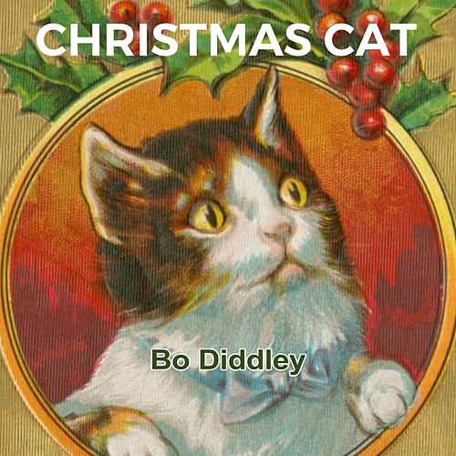 Christmas Cat by Robert Johnson