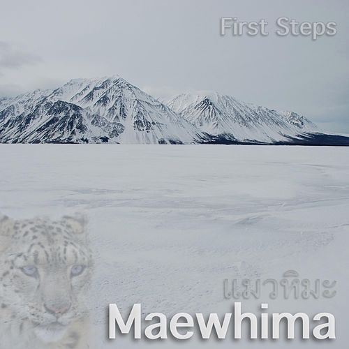 First Steps by Maewhima