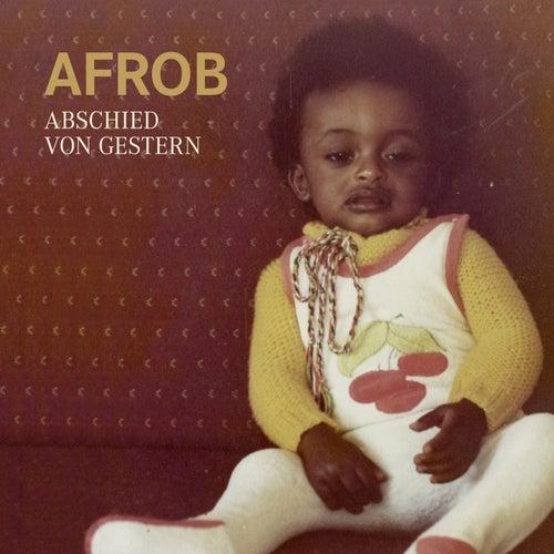 Stein auf Stein von Afrob