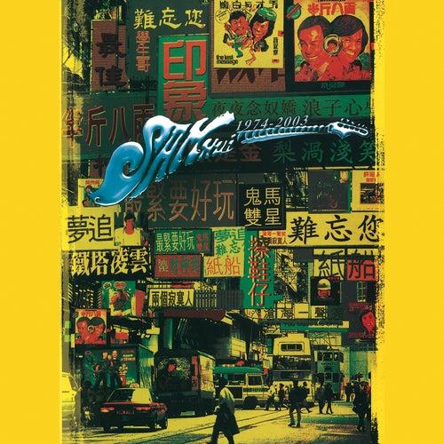 Nan Wang Xu Guan Jie Sam Hui 30 Nian by Sam Hui