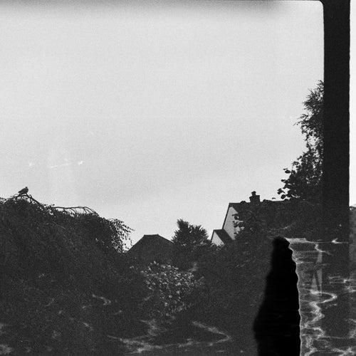 Lastdays (Winter Edition) von Samuel Proffitt