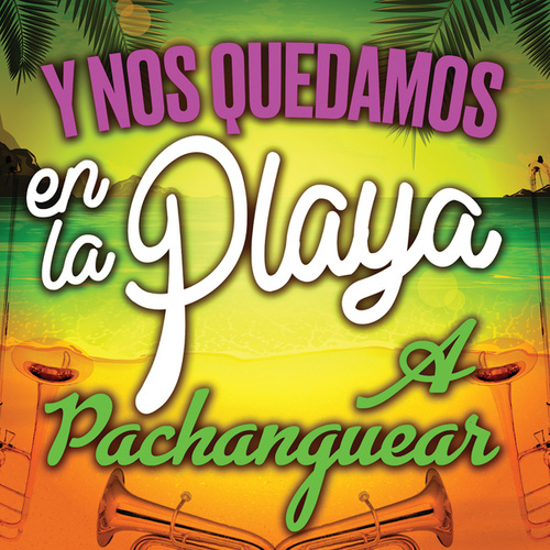 Y Nos Quedamos En La Playa A Pachanguear by Various Artists