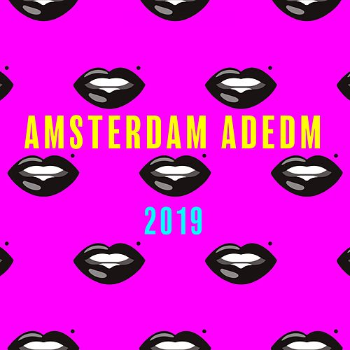 Amsterdam Adedm 2019 by Various Artists