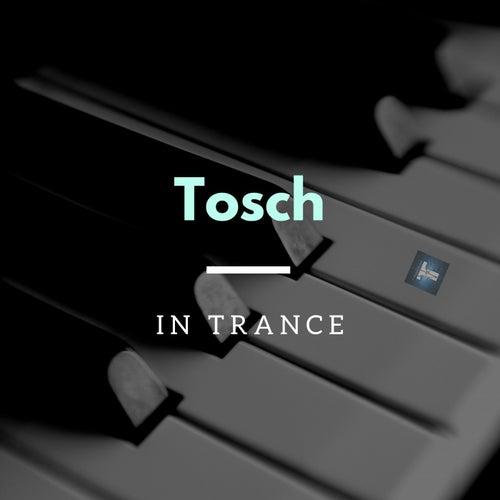 In Trance de Tosch
