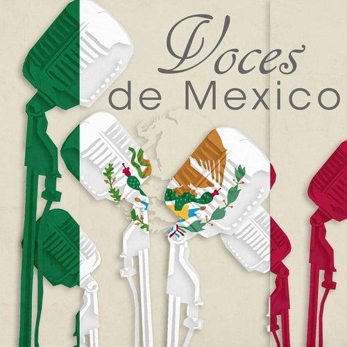 Voces de México de Various Artists