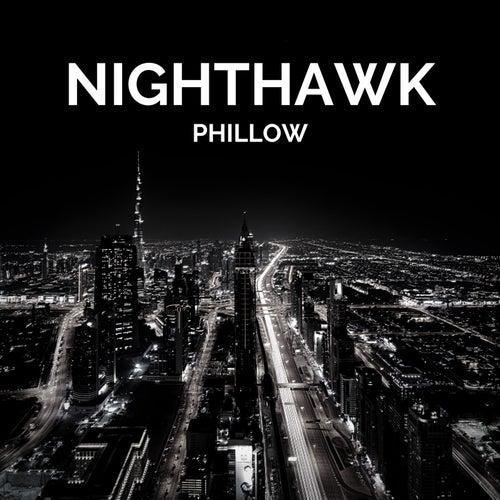 Nighthawk by Phillow