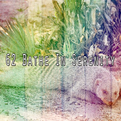 62 Bathe in Serenity by S.P.A