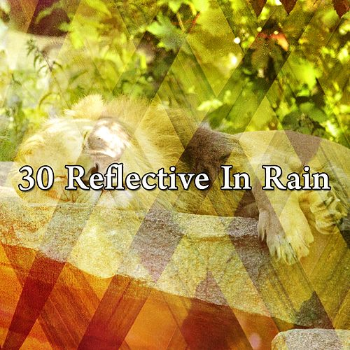 30 Reflective in Rain by Rain for Deep Sleep (1)