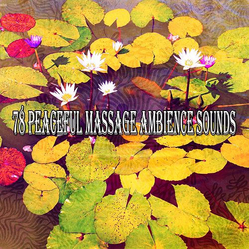 78 Peaceful Massage Ambience Sounds von Entspannungsmusik