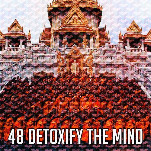 48 Detoxify the Mind von Yoga Music