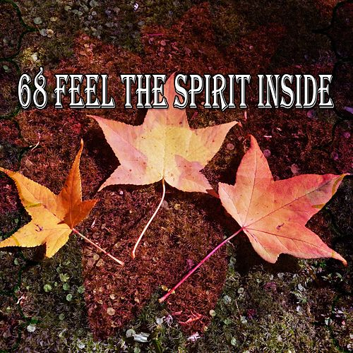 68 Feel the Spirit Inside de Zen Meditate