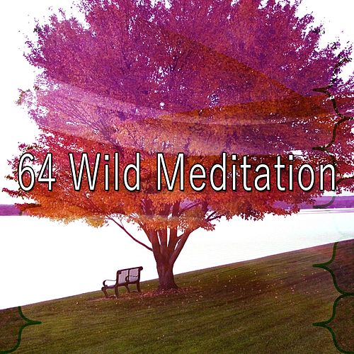 64 Wild Meditation by Deep Sleep Meditation