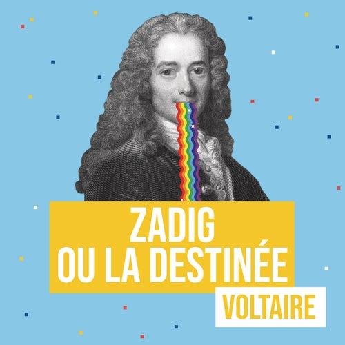 Zadig ou la destinée (Remixes littéraires) by Les liseuses