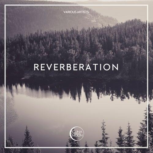 Reverberation de Various