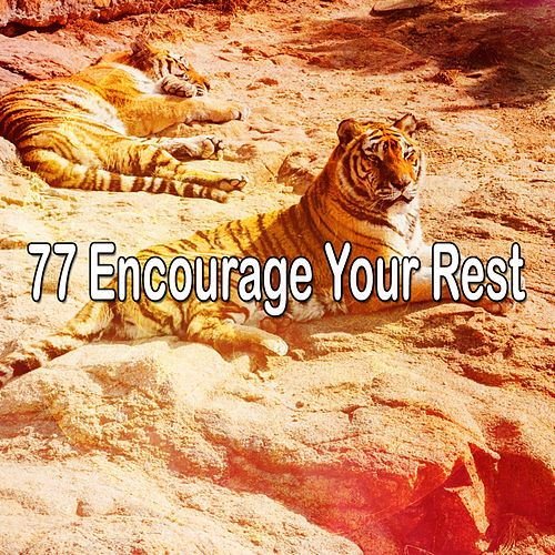 77 Encourage Your Rest de Ocean Sounds Collection (1)