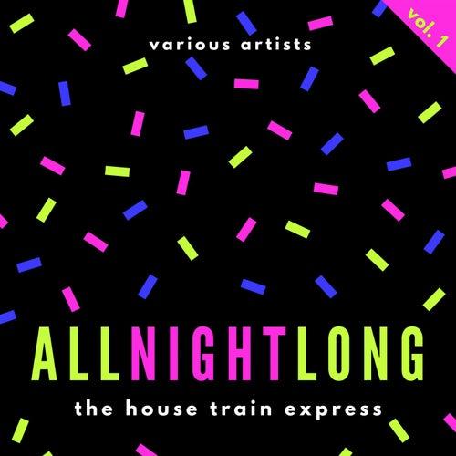 All Night Long (The House Train Express), Vol. 1 de Various Artists